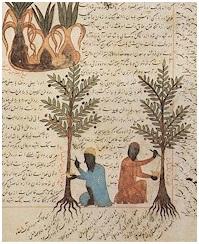 Sebuah halaman di kitab al-Filaha