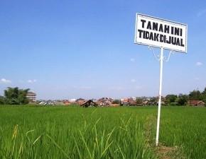 tanah sengketa -  ilustrasi gambar di ambil dari menarailmuku.blogspot.com
